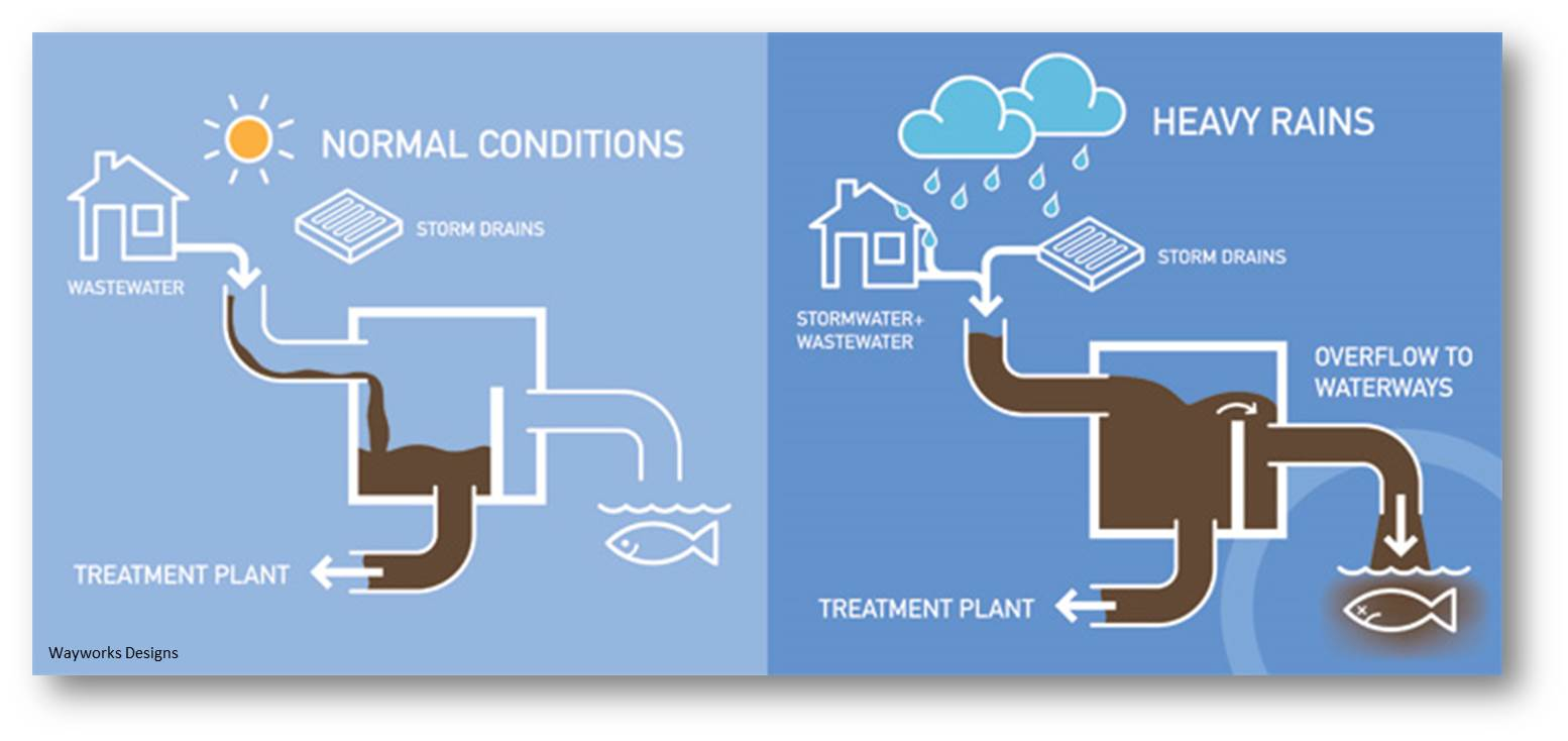reduce water retention during steroid cycle
